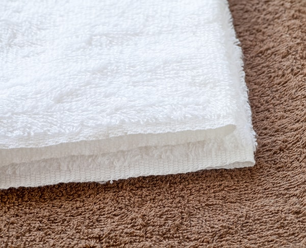 Dangers from Pet Urine on Rugs
