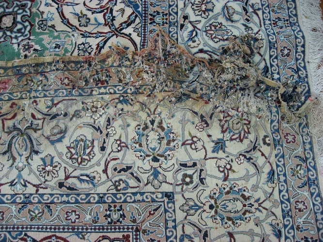 rug-with-water-damage