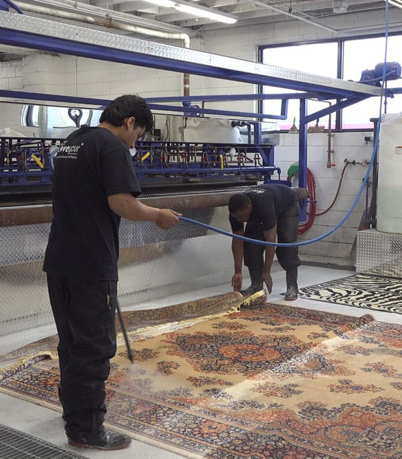 Rug Cleaning Newmarket