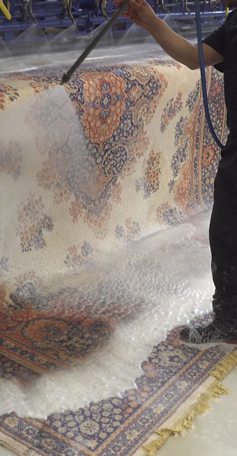Rug Cleaning Near Me in Kitchener