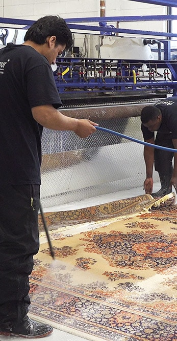 Rug Cleaning Near Me Scarborough