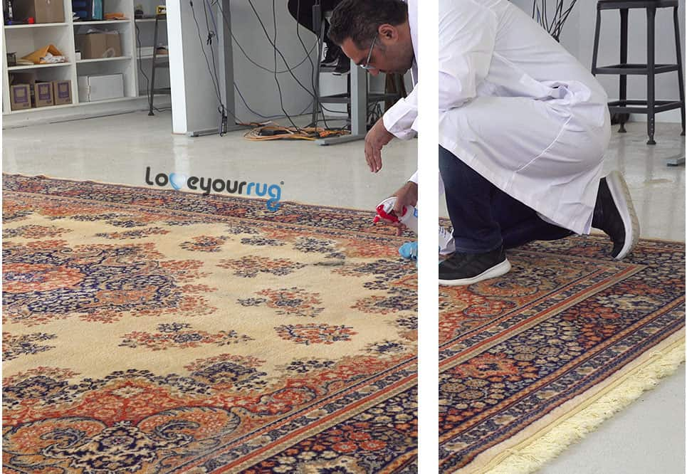 Area Rug Cleaning Pre Treatment Vaughan