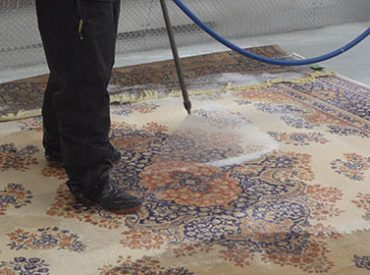 area rug disinfectant toronto east